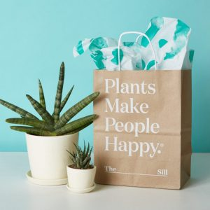 Gifting Plants Online
